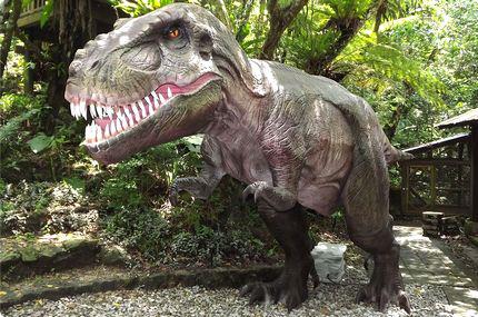 DINO 恐竜 PARK やんばる亜熱帯の森