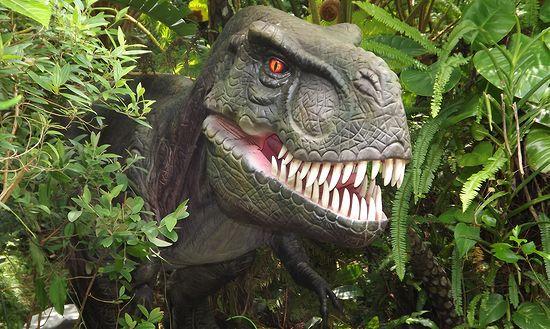 3D恐竜体験のイメージ