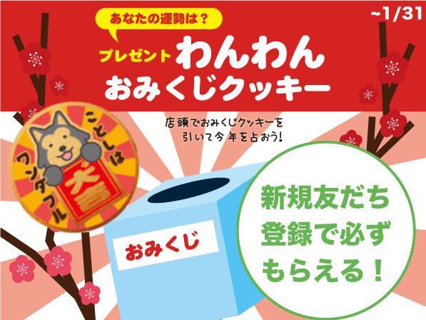 【webサムネイル】LINEクーポン1月わんわんおみくじクッキー