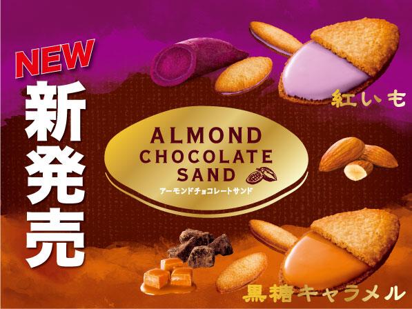 【サムネイル】アーモンドチョコレートサンド新発売